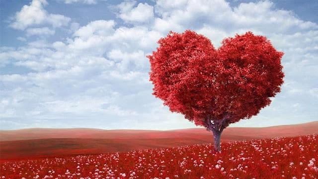 Cinta, Realitas Timbal Balik
