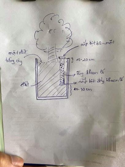 Bản vẻ chi tiết cách đặt ống tạo phân hữu cơ D114 vào bồn cây