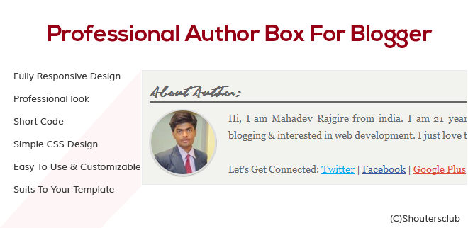 professional about the author box for blogger