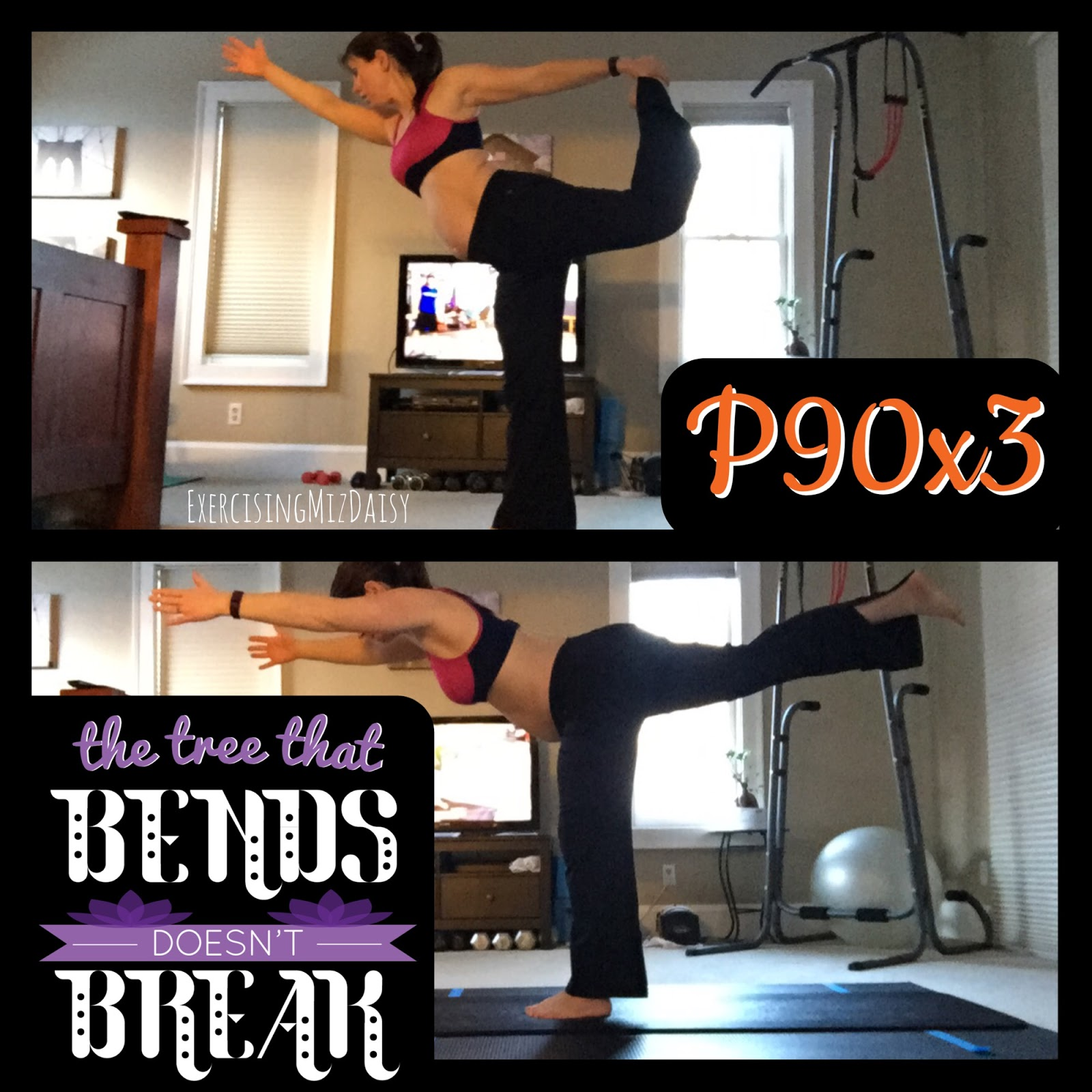 Blogging Miz Daisy: P90x3 Review