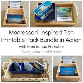 Montessori-inspired Fish Printable Pack Bundle with Free Bonus Printable