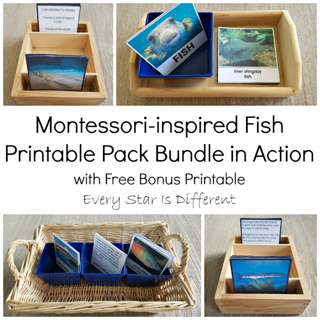 Montessori-inspired Fish Printable Pack Bundle with Free Bonus Printable