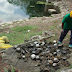 Recolectan cientos de medidores de luz dentro de cenote en Yucatán
