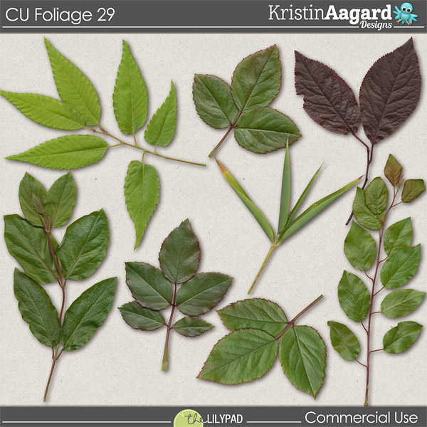 http://the-lilypad.com/store/CU-Foliage-29.html