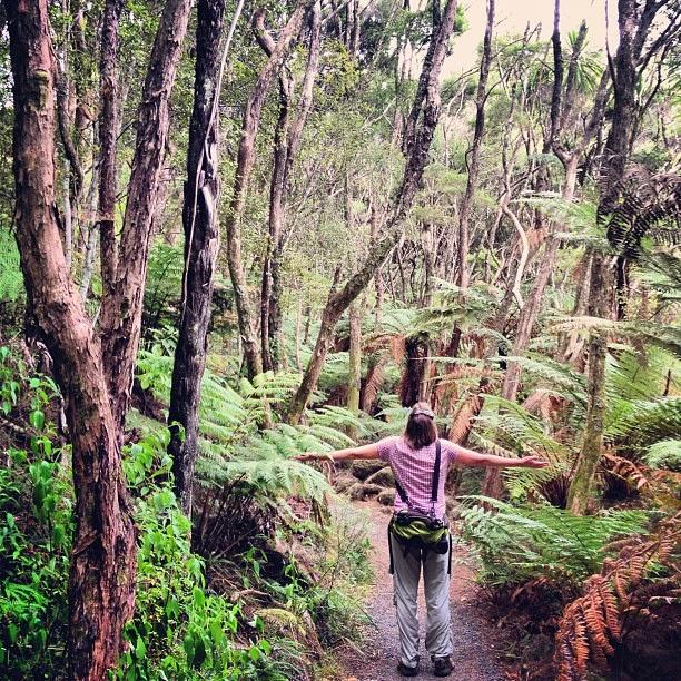 10 Best Adventure Holiday Destinations | Best Adventure Holiday Destinations | New Zealand