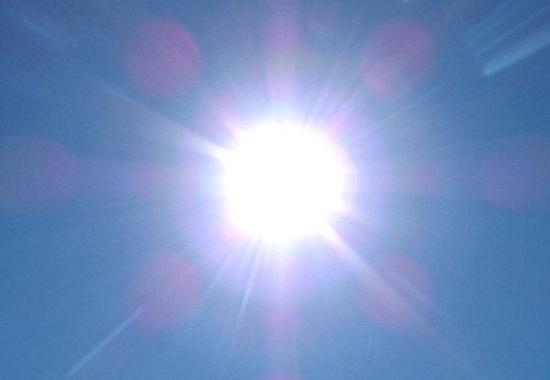 Ảnh hưởng của ánh sáng đến đời sống sinh vật