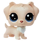 LPS Keep Me Pack Big Pet Shop Cookie Jar (#No#) Pet
