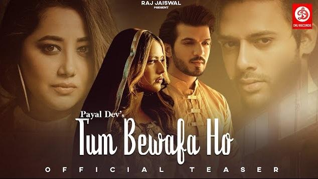 Tum Bewafa Ho Lyrics - Payal Dev