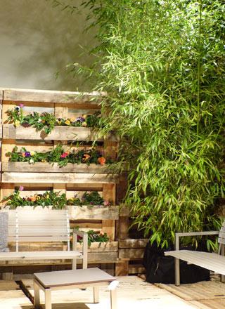 Gartenblog geniesser garten sichtschutz im garten teil 2 for Garten planen mit natur sichtschutz balkon