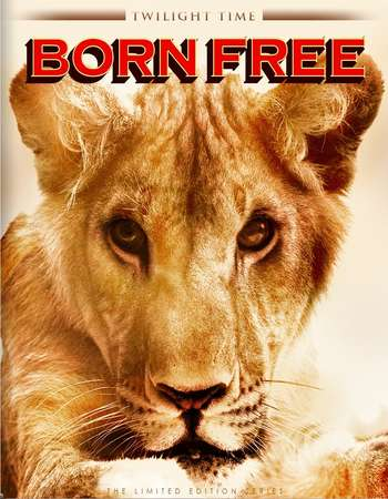 Poster Of Born Free 1966 Dual Audio 720p BRRip [Hindi - English] ESubs Free Download Watch Online downloadhub.in