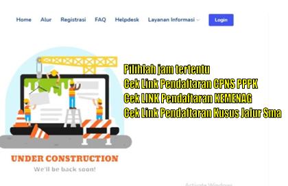 Awas Portal Pendaftaran CPNS PPPK Down, Tips Pilihlah Jam Tertentu Untuk Melakukan PenDaftartaran