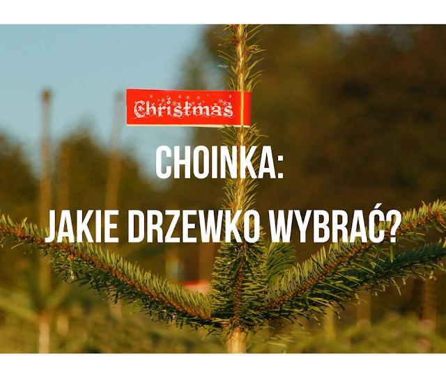 Choinka: jakie drzewko wybrać?