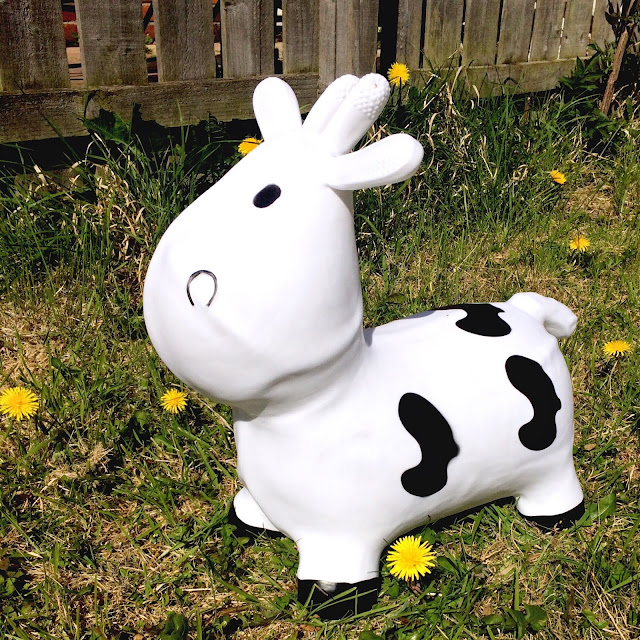 toy bouncy cow in the garden