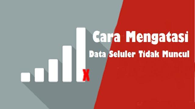 Cara Mengatasi Data Seluler Tidak Muncul