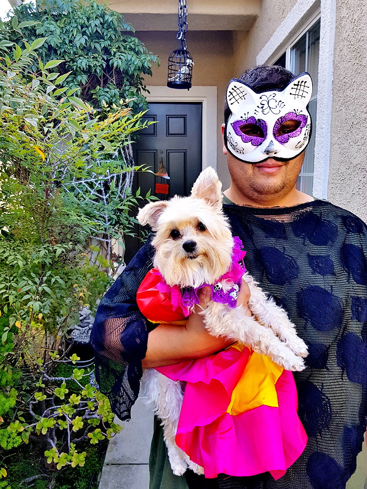 Calavera Costume- 5 Budget Friendly Pet Costume Ideas #DoThe99 #99Obessed #AD