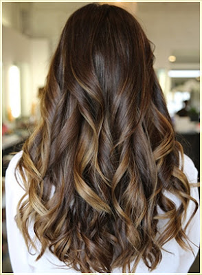 Dark chocolate and caramel Two Tone Hair - Two Tone Hair Color Ideas For Long Hair