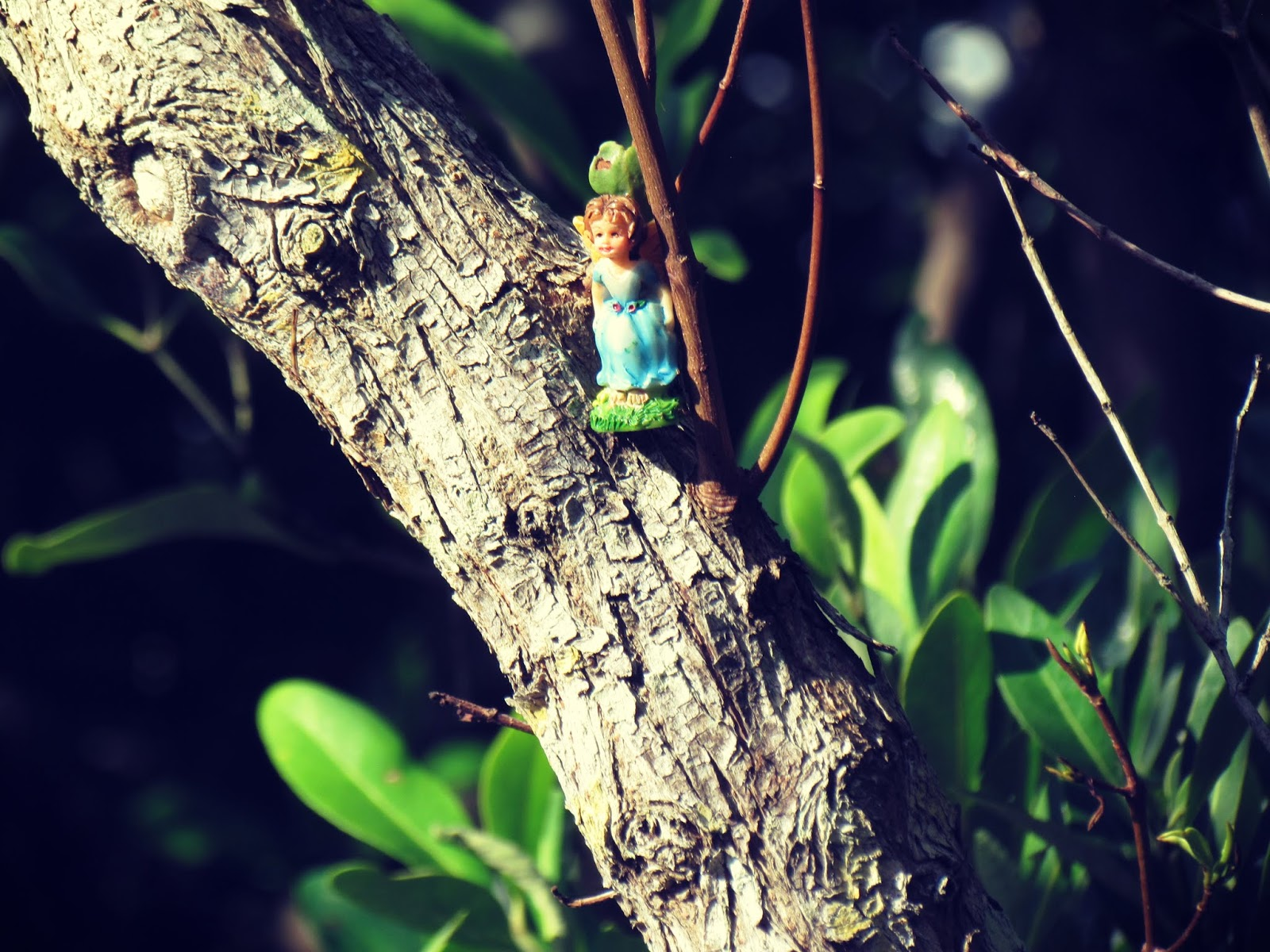 A magical porcelain fairy girl figurine perched in a tall oak tree in the wilds of Florida