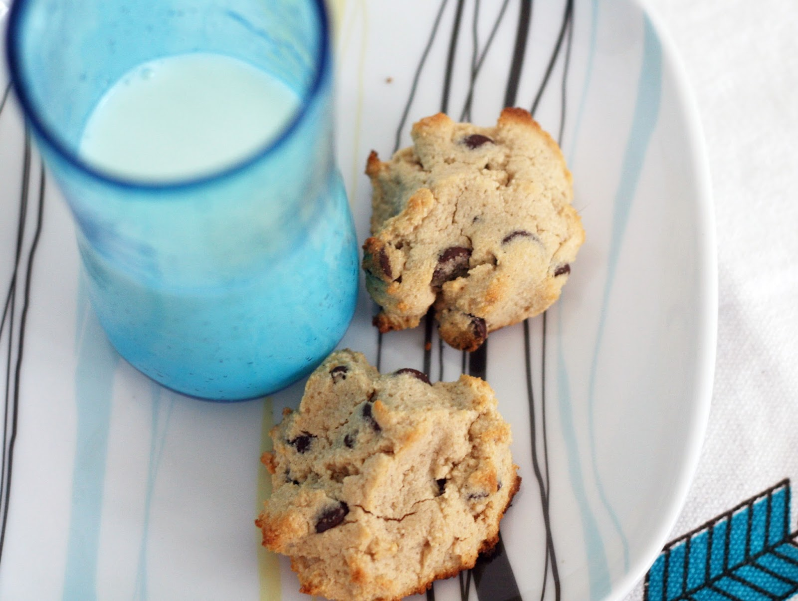 blueberry yogurt cookies recipe chocolate chip smores - HD 1600×1205