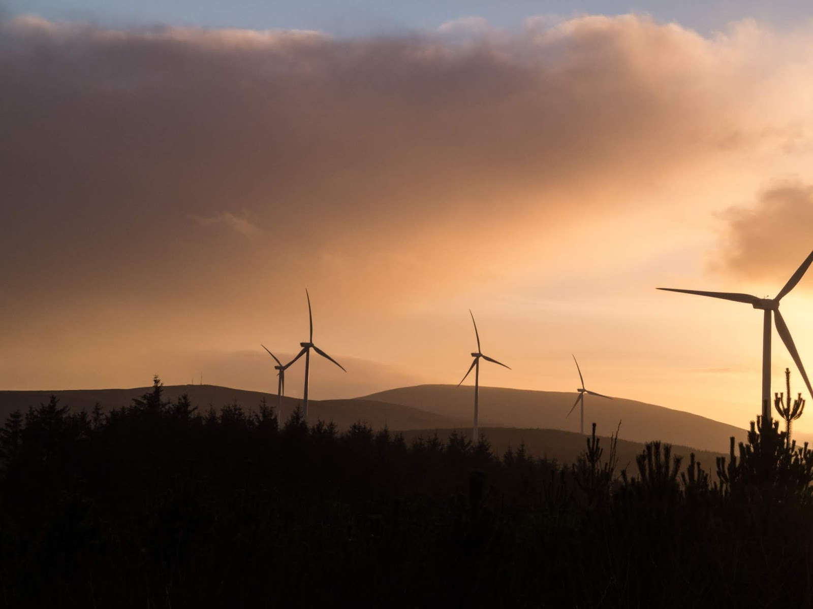 Wind turbine, mountain and conifer landscape at sunset.