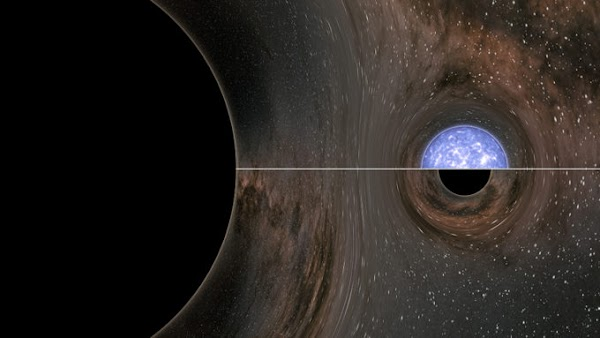 LIGO and Virgo detected a collision between a black hole and a mystery object