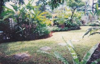 Galeri Taman - Tukang Taman Surabaya 94