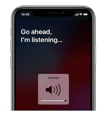 كيفية تغيير حجم ملاحظات Siri الصوتية على iPhone و iPad