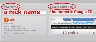 Customized Google URL