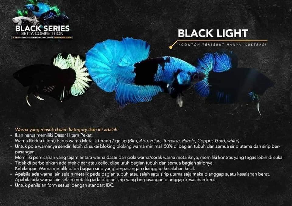 Kategori Kontes Cupang Black Light - Ikanhiasku.net