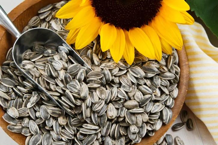 11 Benefícios Das Sementes de Girassol à Saúde