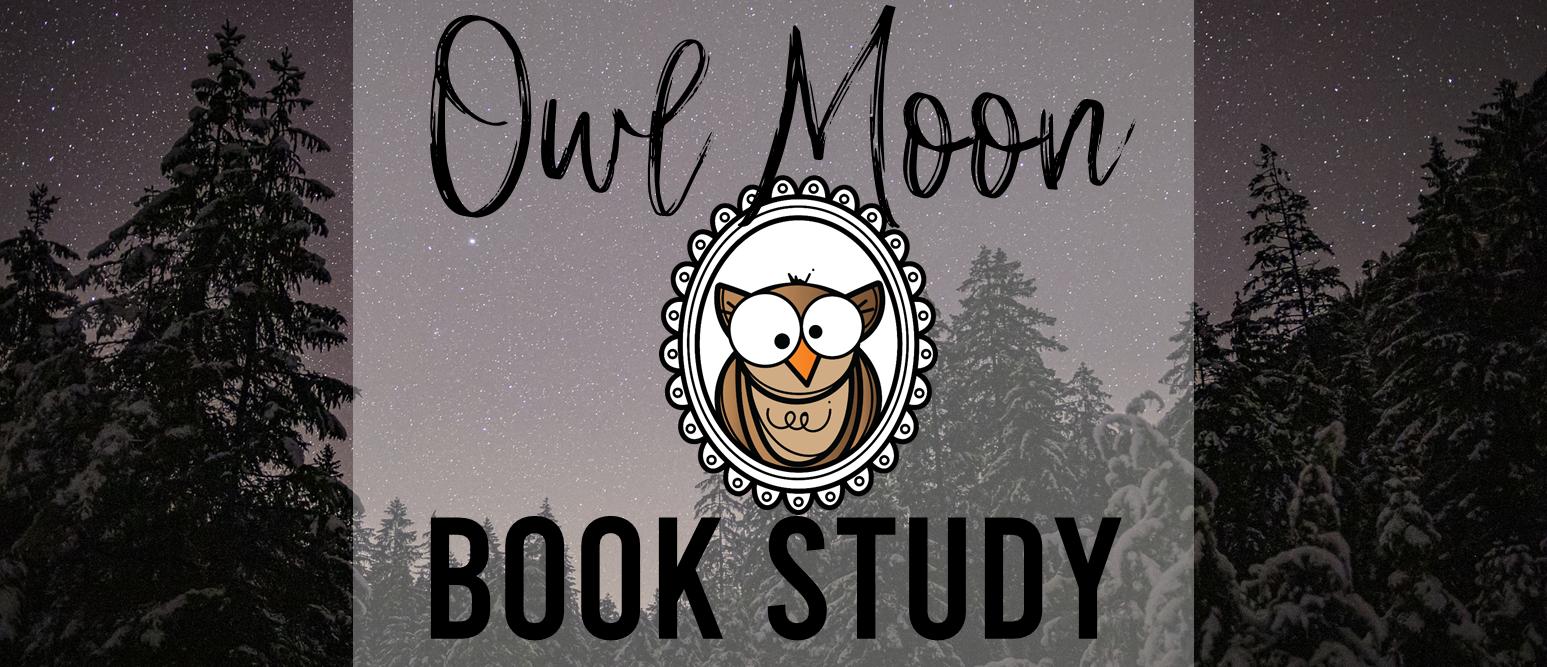 Owl Moon book study companion literacy activities