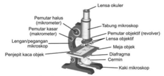Bagian-bagian Mikroskop Beserta Fungsi