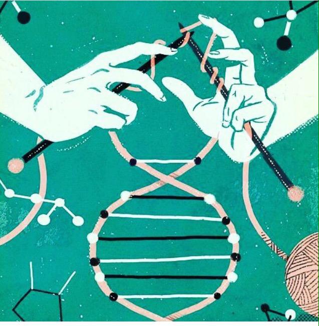Ativando a Terceira Camada de DNA