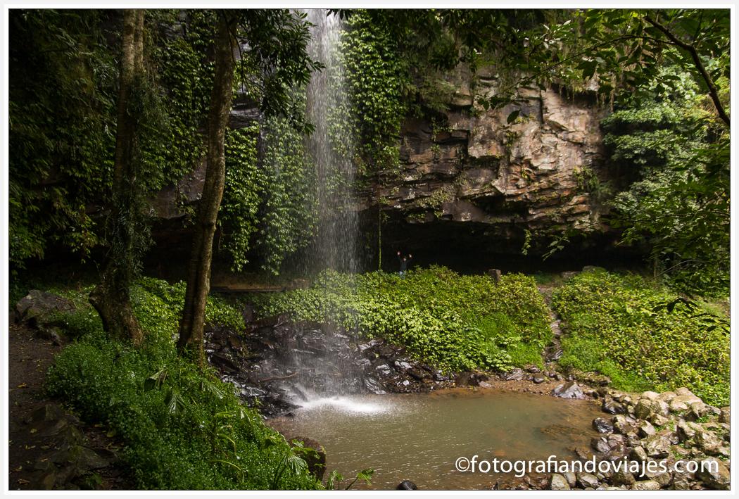 Crystal Shower Falls cascadas Dorrigo, Australi