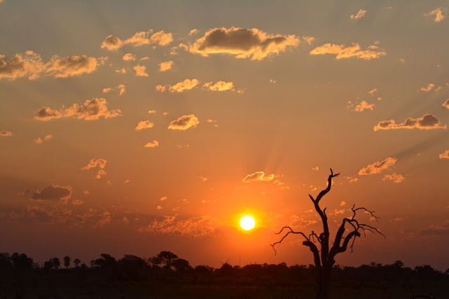 susnset, zonsondergang, beautiful sunset, african sunset, dead tree, end of the day, awesome sunset, mooie zonsondergang