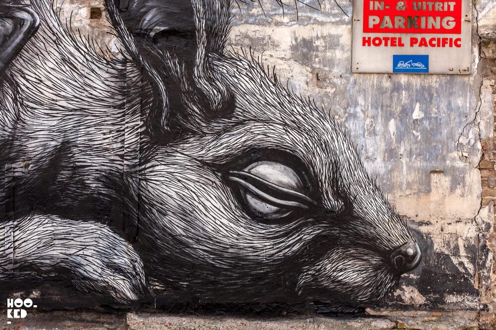 Belgian Artist Roa's Animal Mural in Ostend