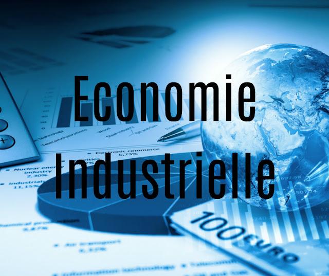 Résumé Economie Industrielle PDF
