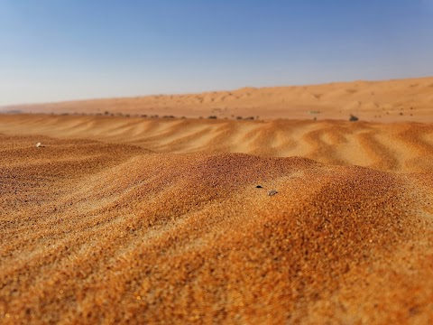 Desert صحراء Gurun