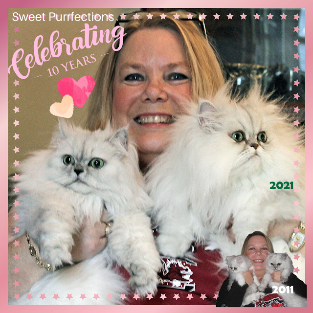 Celebration graphic photo of Mom Paula and two persian cats from 2011 and 2021