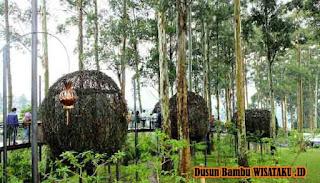 Tampat Makan Sangkar Burung Lutung kasarung dusun bambu