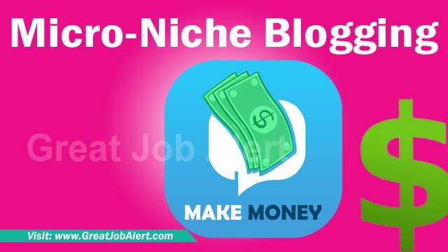 What is Micro-Niche Blogging