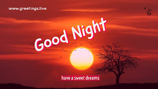 Excellent-Good-Night-have-a-sweet-dreams