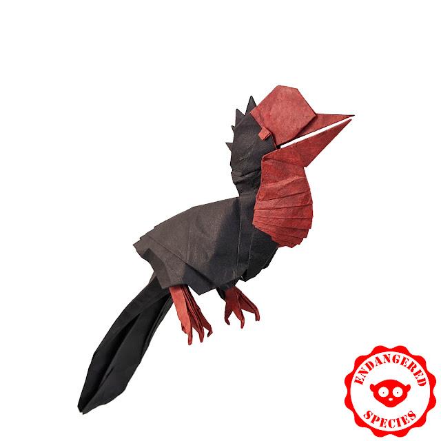 helmeted-hornbill-origami