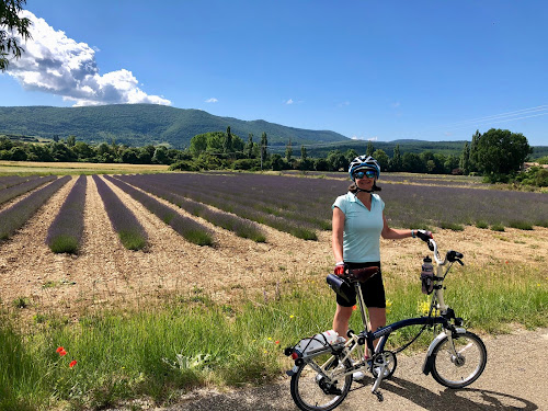 French Village Diaries cycling les Gorges de la Nesque lavender Provence