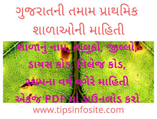 tipsinfosite all gujarat primary school list download gujarat information site