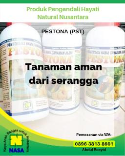 Pestisida Hayati Pestona 500 cc