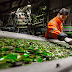 Renewi verhoogt recyclingpercentage binnen 5 jaar tot 75 procent