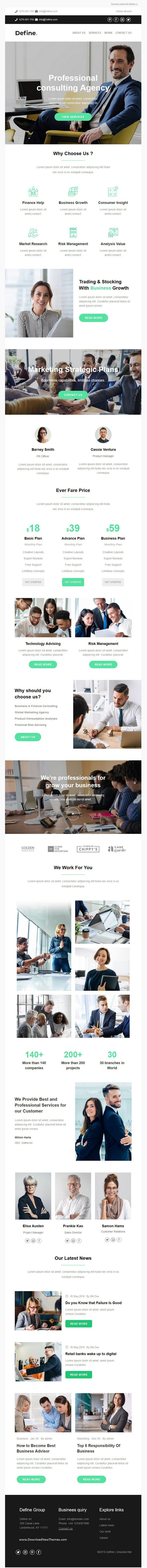 Business And Financial Consulting Email Template