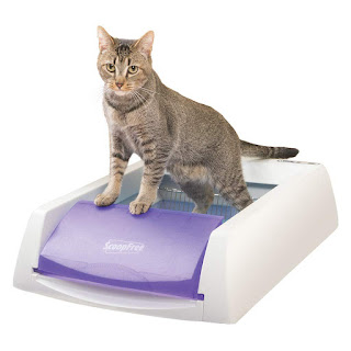 PetSafe-ScoopFree-Self-Cleaning-Automatic-Disposable