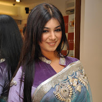 Beautiful Ayesha Takia in traditional ethnic saree Promote film MOD