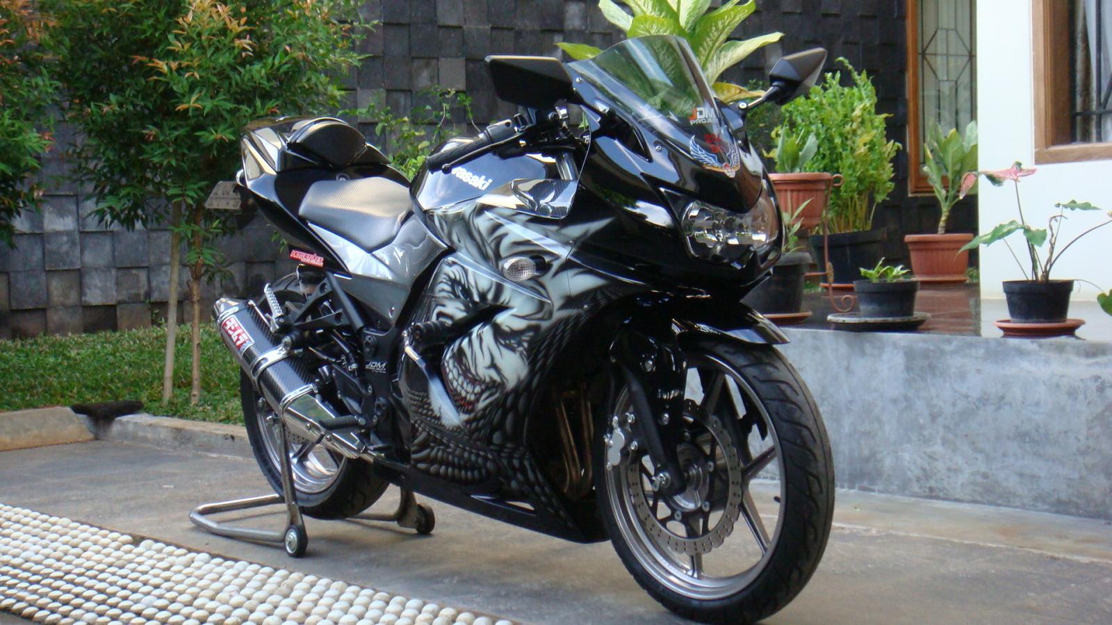 Gambar Modifikasi Kawasaki Ninja 250R Akan Saya Berikan Pada Postingan